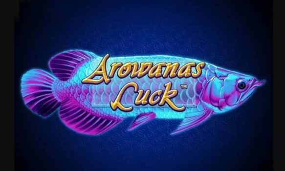 Arowanas Luck slot review