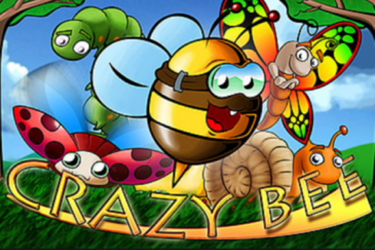 Crazy Bee Slot Review