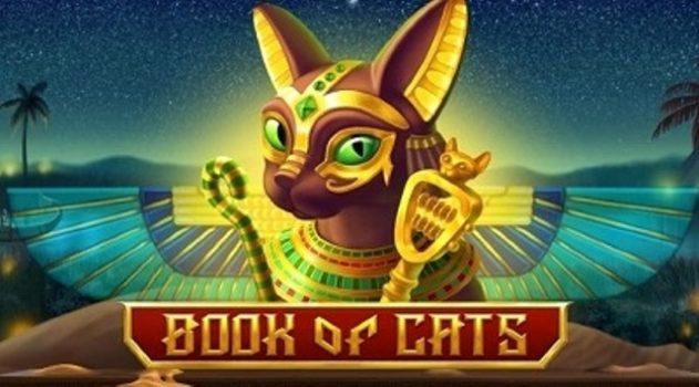 fitzgerald casino blackhawk Online