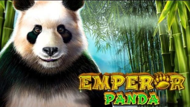 Emperor Panda slot review