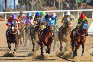 5 Best Horse Betting Tips and Strategies