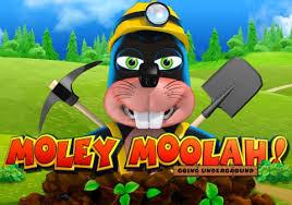 Moley Moolah Slot Review