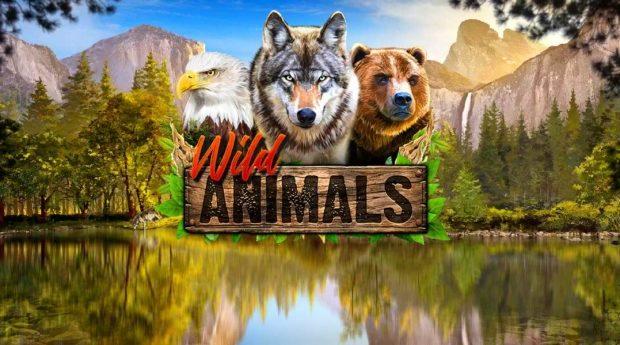 Wild Animals Slot Review