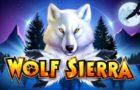 Wolf Sierra Slot Review