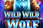 Wild  Wild Wolf Slot Review