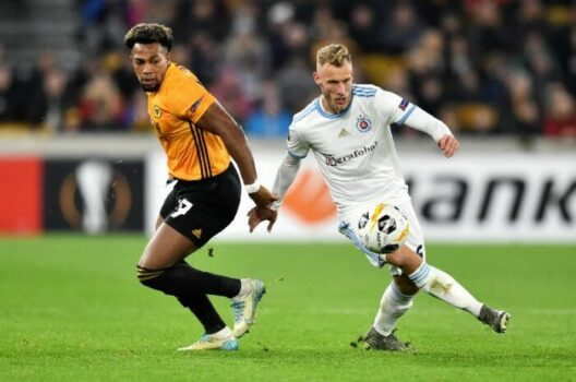 BRIGHTON VS WOLVES Betting Review