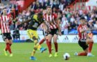SHEFFIELD UNITED VS SOUTHAMPTON BETTING Review