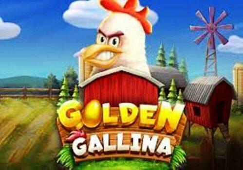 Golden Gallina Slot Review