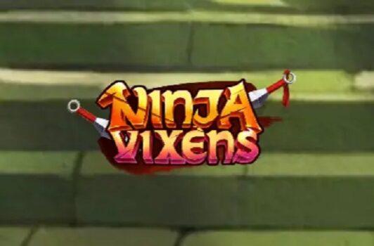Ninja Vixens Slot Review